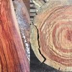 Tìm hiểu về gỗ hương gồm có mấy loại và cách phân biệt gỗ hương